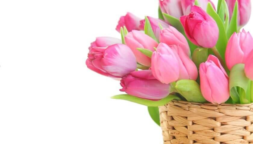 Поздравляем прекрасную половину с 8-м марта!