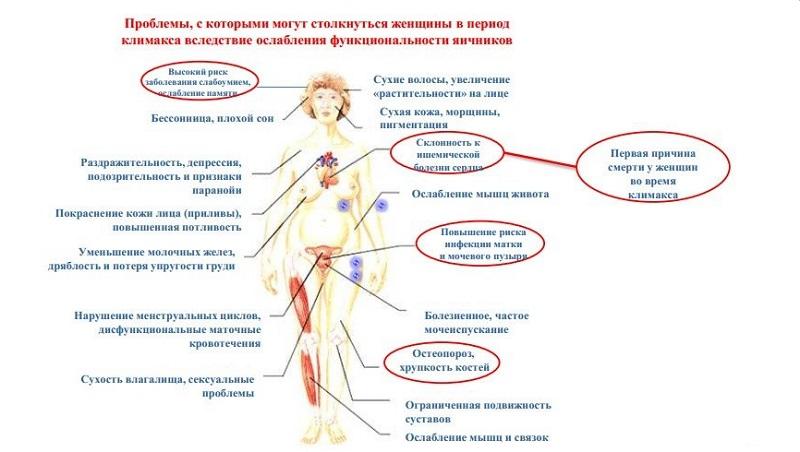 Осложнения при патологическом климаксе